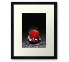 An Apple Framed Print