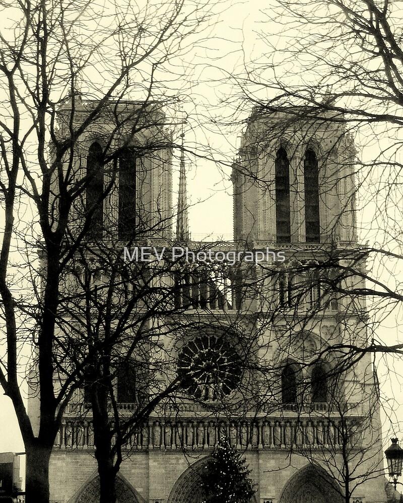 NOTRE DAME de PARIS by MEV Photographs
