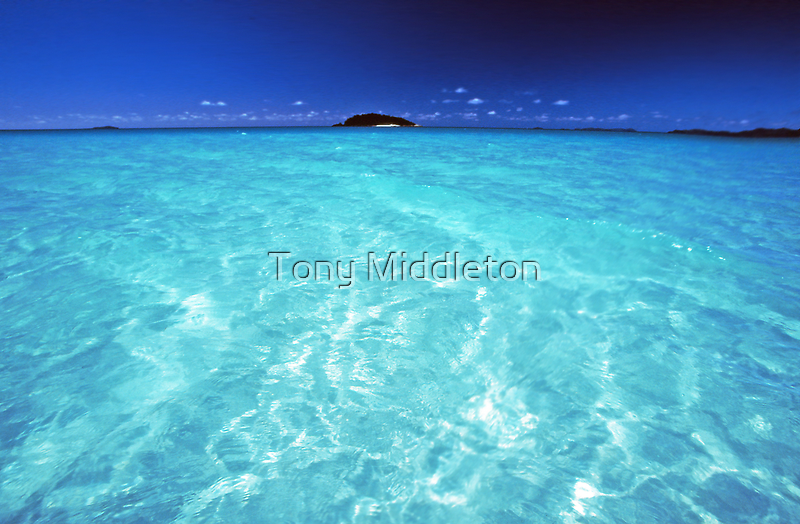 divine waters by Tony Middleton