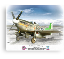 "North American P-51 ""Fighting Lady"" Canvas Print"