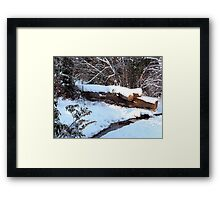 SNOW SCENE 9 Framed Print