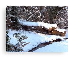 SNOW SCENE 9 Canvas Print
