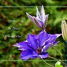 Feeling so Blue by Gilberte