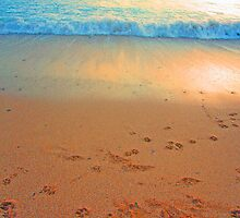Footprints by Fliss