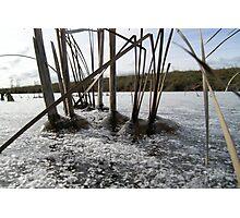 Pond Ice Photographic Print