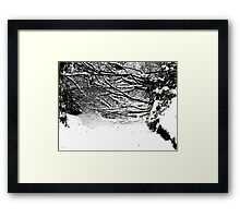 SNOW SCENE 5 Framed Print