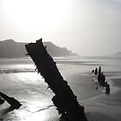 Ship Wreck, Rhosilli, The Gower (Close-up) by chapperskate