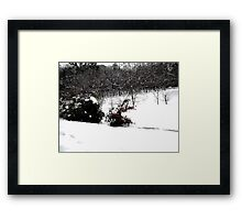 SNOW SCENE 6 Framed Print