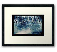 Log Fungus Framed Print