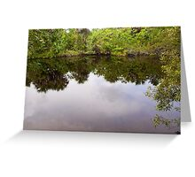 Reflective Symmetry  Greeting Card