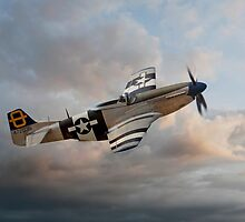 Jumpin Jacques - P51 Mustang by © Steve H Clark Photography