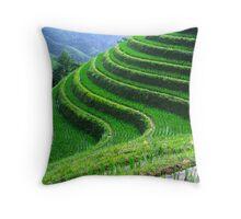 Perfect terraces Throw Pillow