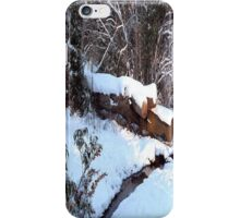 SNOW SCENE 9 iPhone Case/Skin