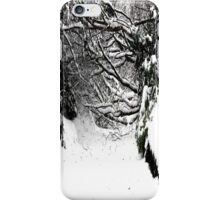 SNOW SCENE 5 iPhone Case/Skin
