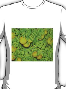 Oranges, oranges, lovely oranges. T-Shirt