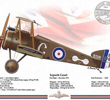 Sopwith Camel by A. Hermann