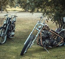 Choppers under mountain ashes by TheTintti