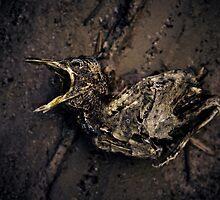 Death 1 by Richard Neath