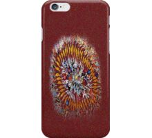 Explosion~Implosion iPhone Case/Skin