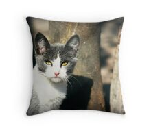 Stray Throw Pillow