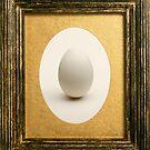 The egg 1 by Kurt  Tutschek