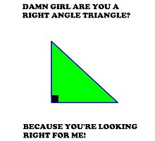 Damn are you a right angle triangle. Because you're looking right for me! by Tali Dye