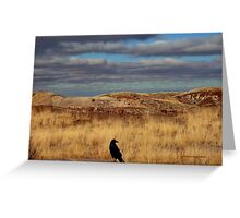 Raven at the Petrified Forest Greeting Card