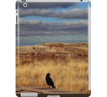 Raven at the Petrified Forest iPad Case/Skin