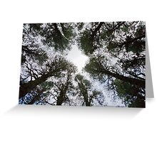 The gathering of the trees Greeting Card