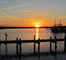 Sunset In North Carolina by Cynthia48