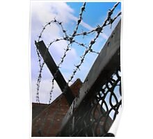Barbed Sky Poster