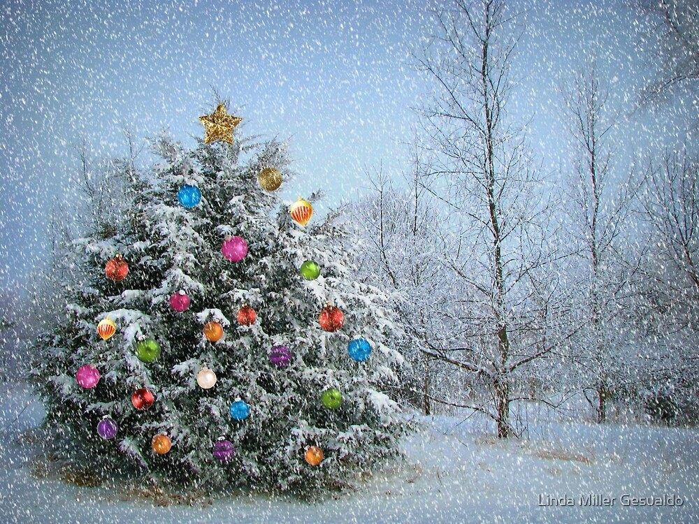 Decorated Winter by Linda Miller Gesualdo