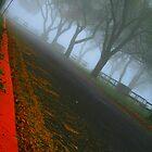 Follow the Unbeaten Path by jjacobson