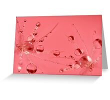 Champagne bubbles Greeting Card