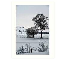 Winter Scene 1 Art Print