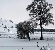 Winter Scene 1 by miclile