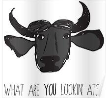 Cranky Buffalo Poster