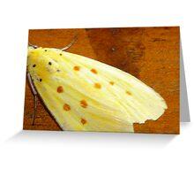 orange polka-dotted moth Greeting Card
