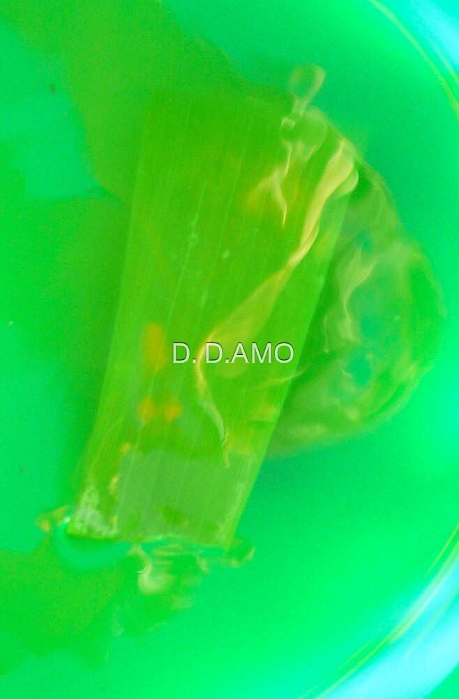 In the water, inside Aloe Vera by D. D.AMO