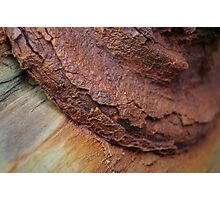 Rust or Bust! Photographic Print