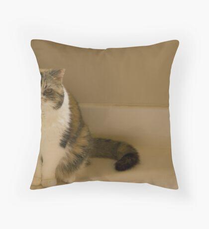 Grumpy Gracie Throw Pillow