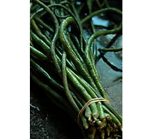 Chinese Long Beans Photographic Print