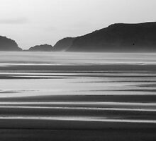 Beach at Dusk by Phil Whiting