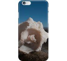 Ruin iPhone Case/Skin