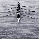 Rowing by Lucy Hollis