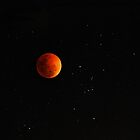 The Stars by KeepsakesPhotography Michael Rowley