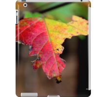 Yellow And Red Maple Leaf In Autumn | Middle Island, New York  iPad Case/Skin