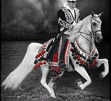 ·٠•● █░║► RIDING THE ARABIAN STORM PICTURE/CARD  ◄║░█ ●•٠· by ✿✿ Bonita ✿✿ ђєℓℓσ