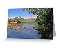 Cadjeput Waterhole Greeting Card
