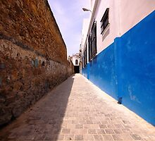 Blue Rue by r2shotme